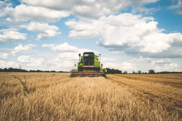 Farming: A Trade of the Past That's Vital for Our Future.