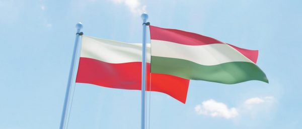 YEPP Statement on the vetoing of the MFF and NGEU by Hungary and Poland